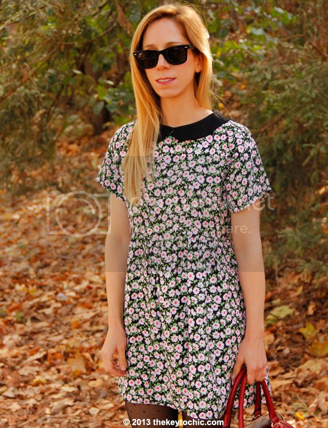 Motel Betty collared dress in floral love with Peter Pan collar