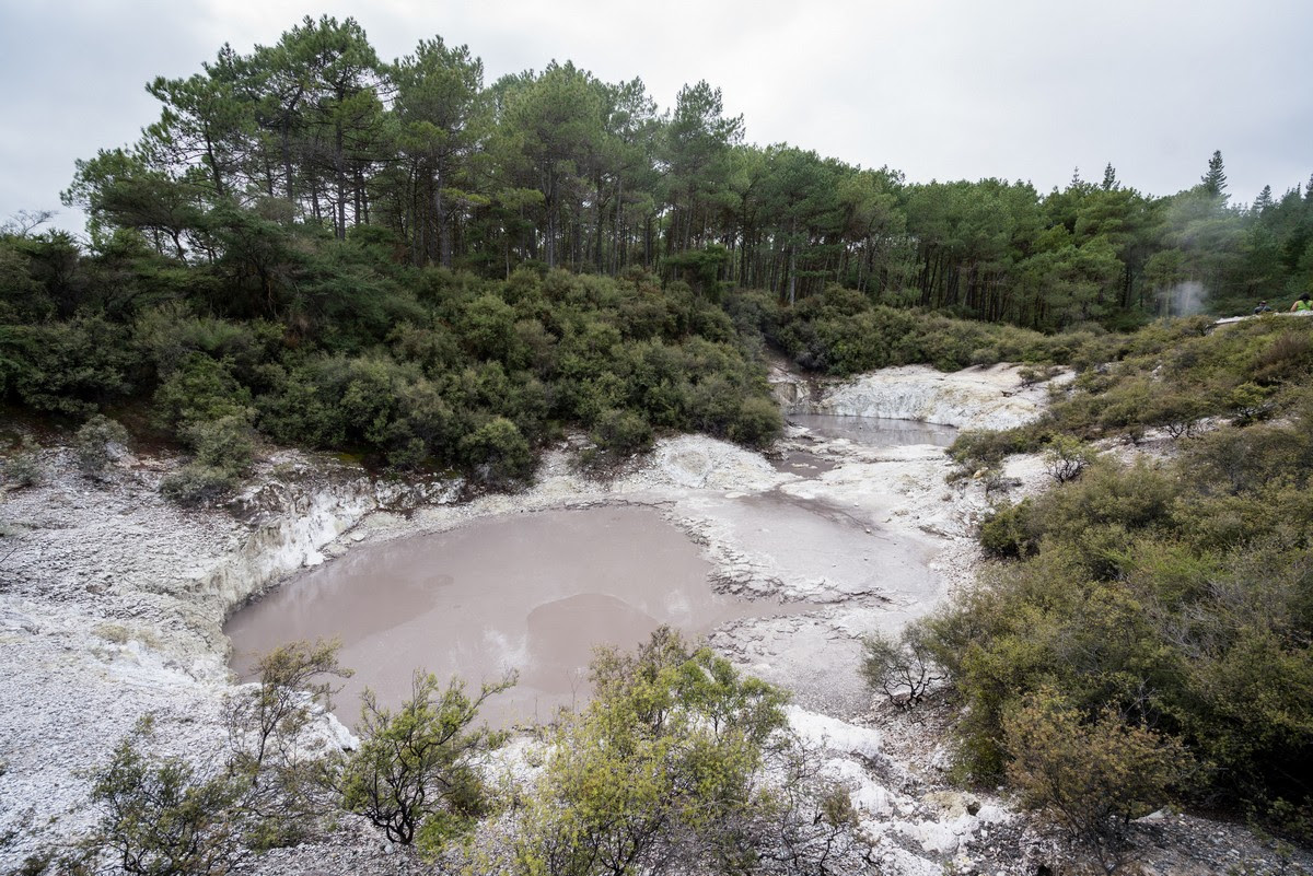 wai-o-tapu-new-zealand-volcanism-5