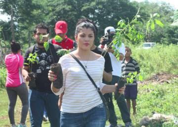 La difícil apuesta de Nicaragua por rescatar sus bosques
