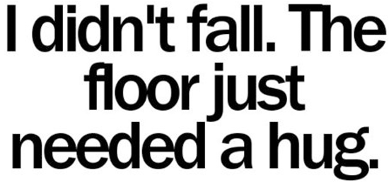 I Didnt Fall The Floor Just Needed A Hug Funny Pictures Quotes