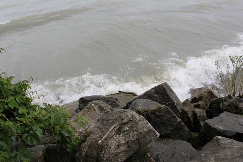 Point Pelee 046