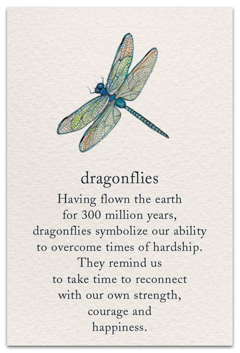 Dragonfly   Support & Encouragement Card   cardthartic.com
