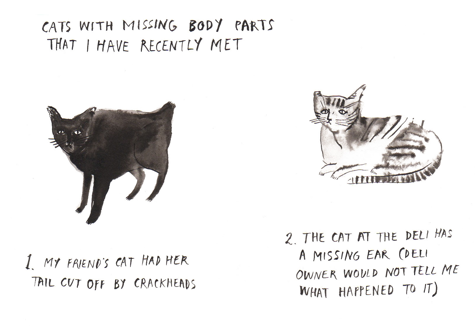 cats missing parts