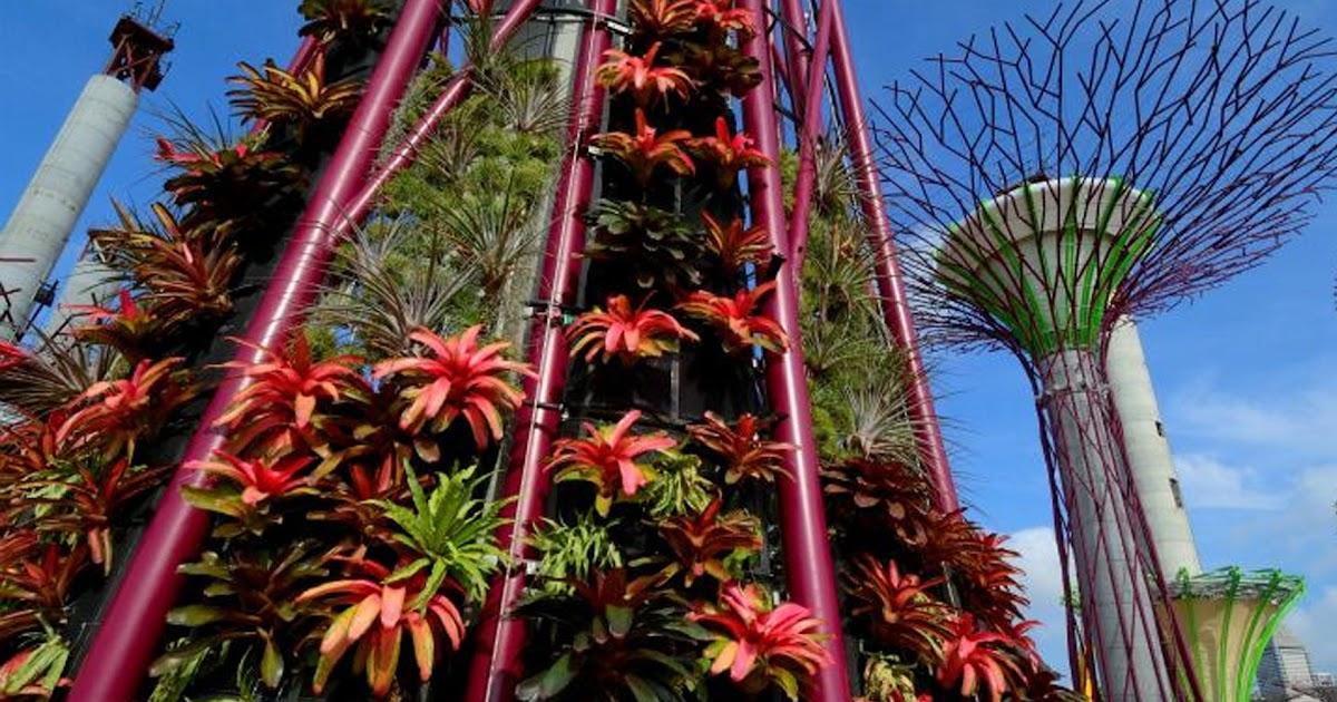 Rboles artificiales con jardines verticales jardines for Jardines verticales artificiales madrid