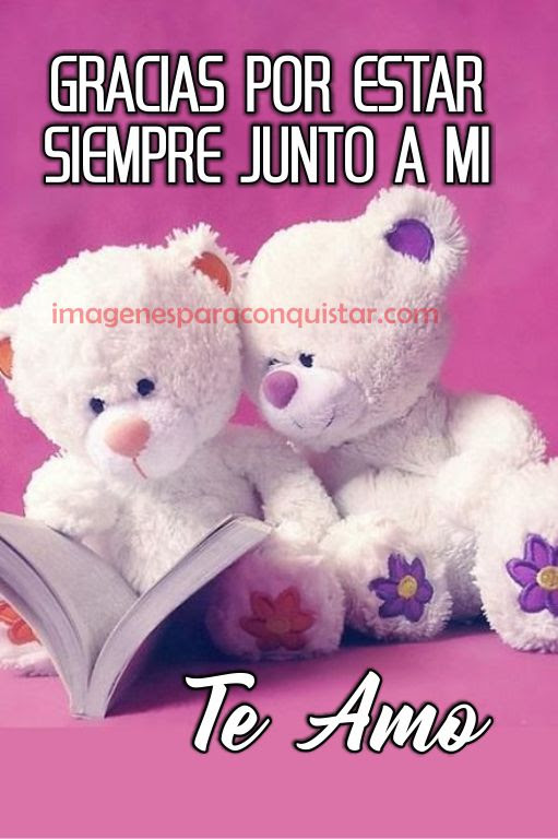 Best Imagenes Bonitas De Amor Para Descargar Gratis Image Collection