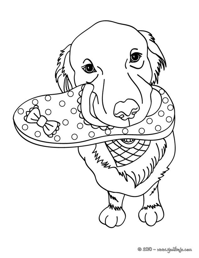 Dibujos Perros Para Colorear 40 Dibujos De Animales Para Colorear