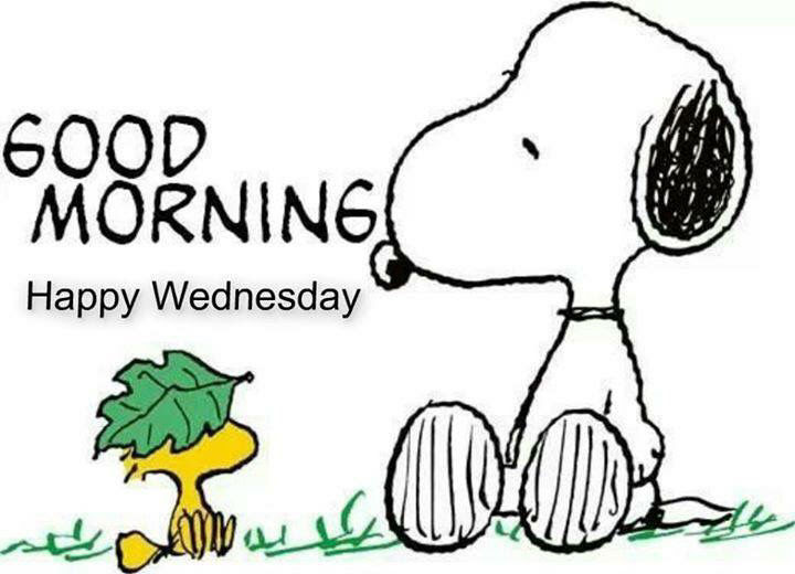 Snoopy Good Morning Happy Wednesday Pictures Photos And Images For