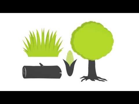 VIDEO - Biomass 101