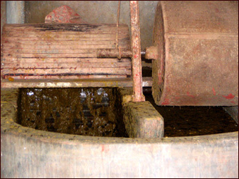 Pulping - The softened and sorted Elephant poo is beaten to a pulp.