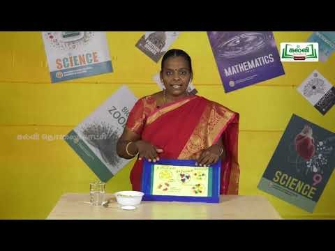 ஆய்வுக் கூடம் Std 9 Science Nammal Sutri Ulla Porutkal Part 01 Kalvi TV