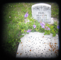 ttv grave2