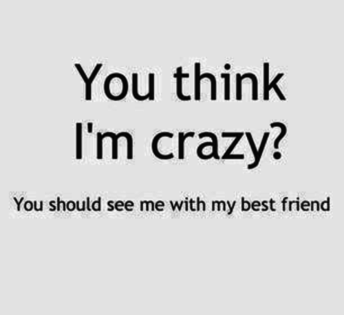 Quotes About Crazy Fun Friends 20 Quotes