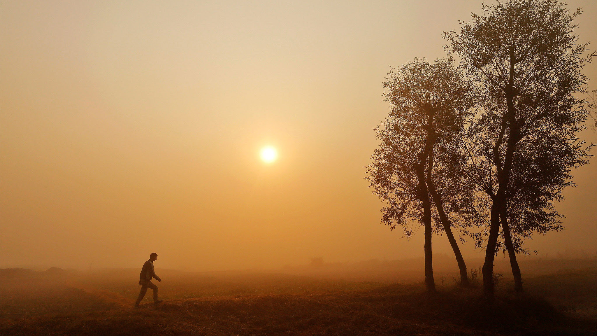 A boy walks through a paddy field on a foggy morning on the outskirts of Srinagar