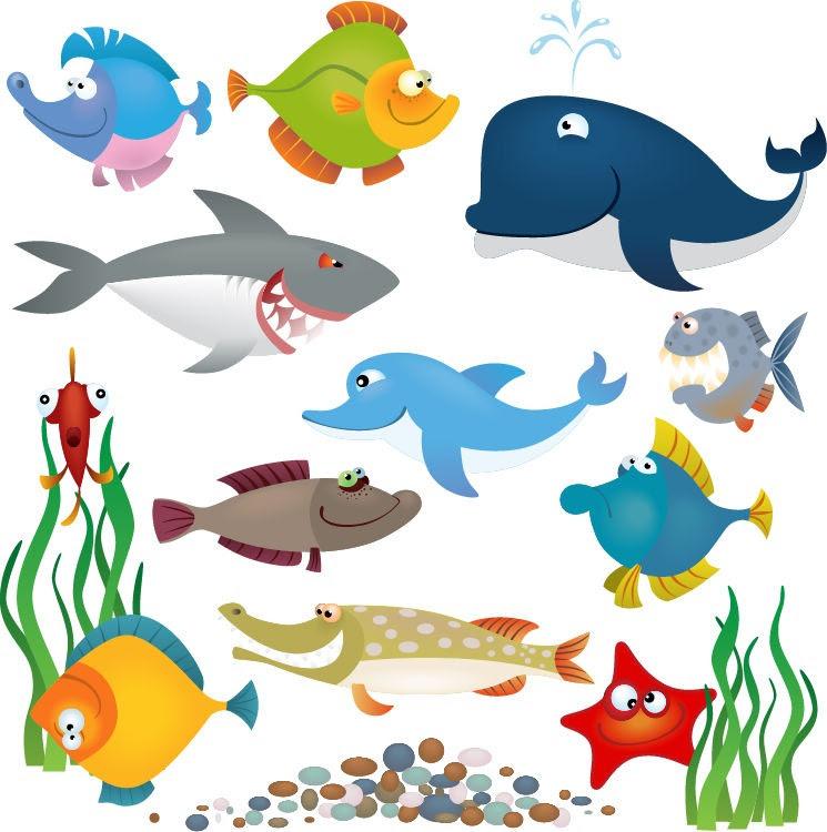 Gambar Animasi Bergerak Ikan Paus Koleksi Hd 10 Mewarnai