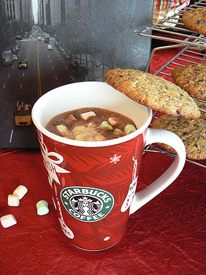 hot chocolate and marshmallows.jpg