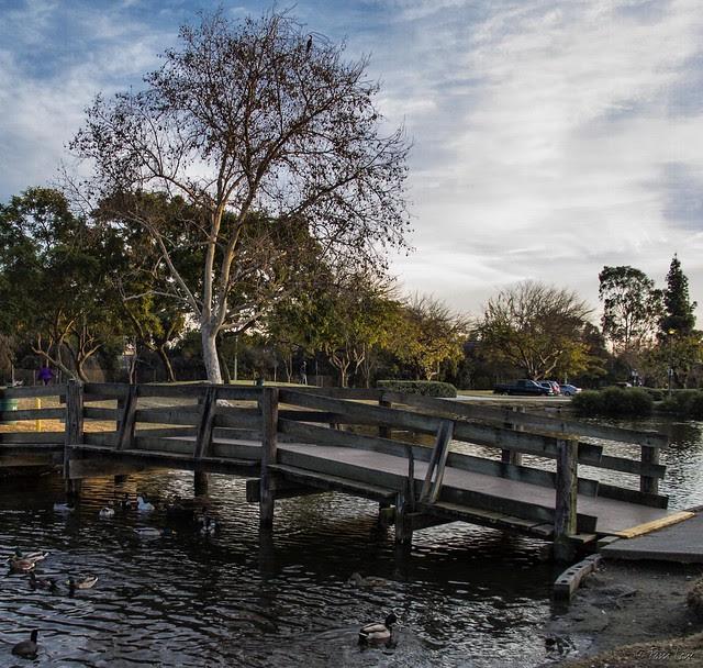 The bridge at Wilderness Park