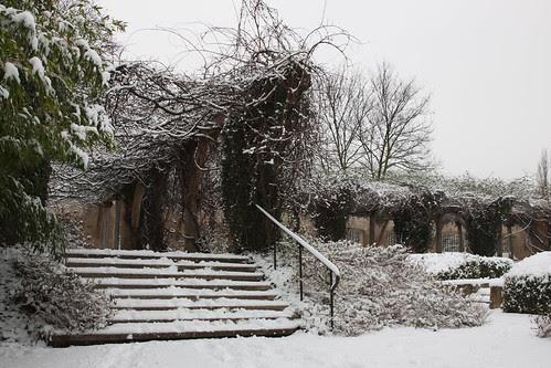01/2013 - Snow 1/2