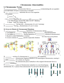 33 Human Genetic Disorders Worksheet Answers - Free ...