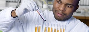Man analysing blood samples