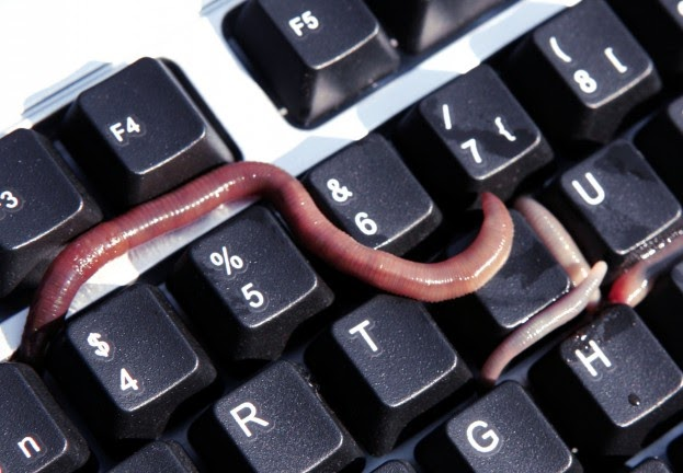 Five Interesting Facts About The Morris Worm For Its 25th