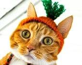 Carrot Costume - Cat
