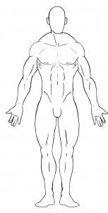 Anatomía Aplicada Al Diseño De Personajes Asociación De