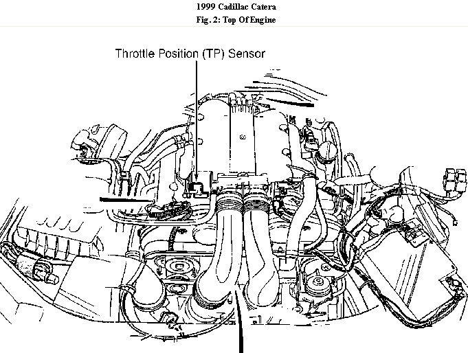 schematics and diagrams  where is the throttle position