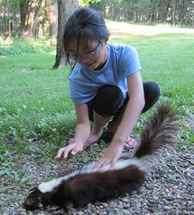 Petting the Skunk