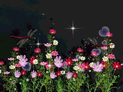 gif flowers  roses  beautiful wallpaper