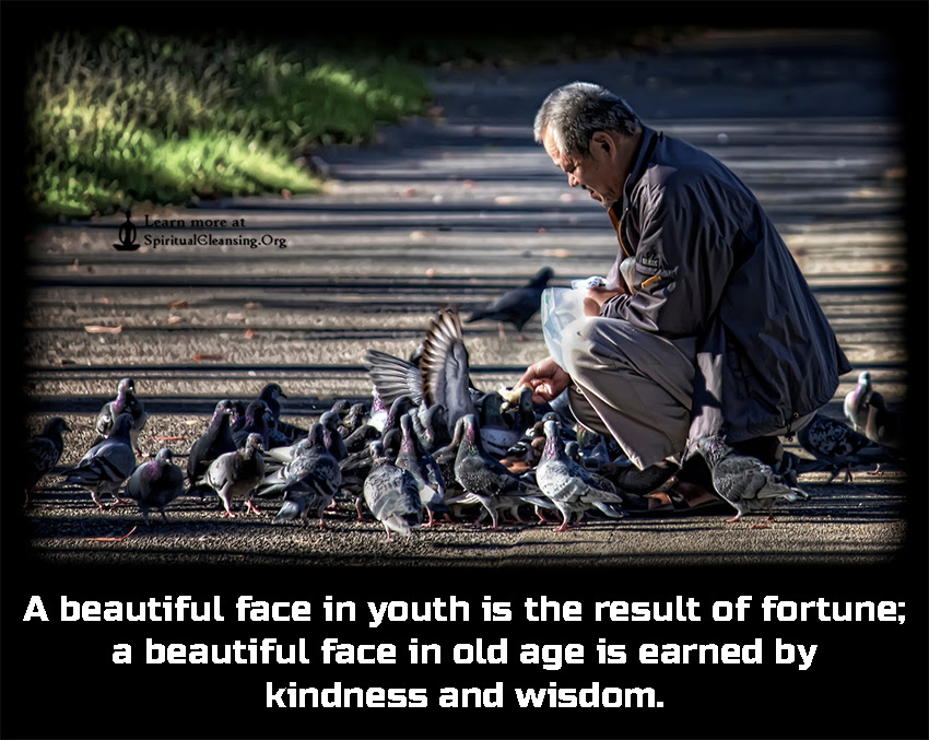 A Beautiful Face In Youth Is The Result Of Fortune A Beautiful Face