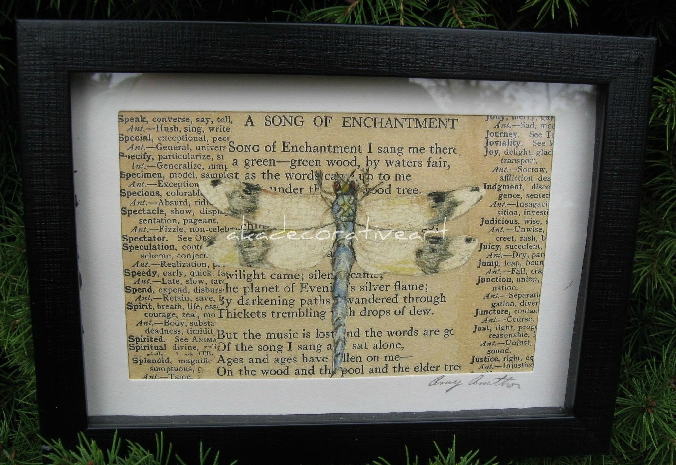 Dragonfly Home Decor Natural History Print by AKAdecorativeart