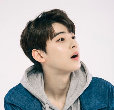 Image result for cha eunwoo
