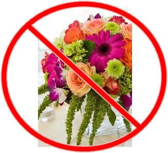 Image result for no flower