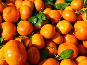 мандариновая диета для похудения
