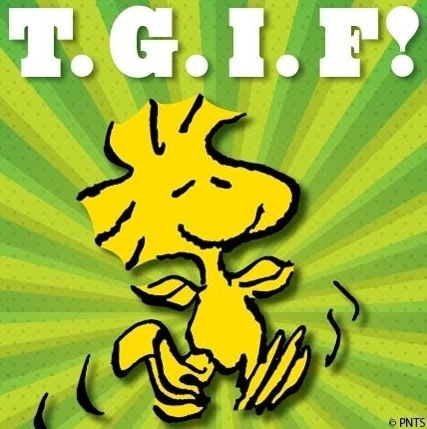 TGIF Pictures, Photos, and Images for Facebook, Tumblr, Pinterest, and Twitter