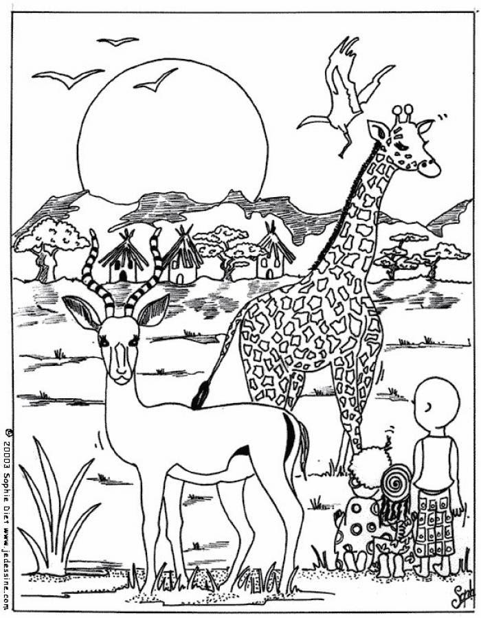 Dibujos Para Colorear Una Cebra Eshellokidscom