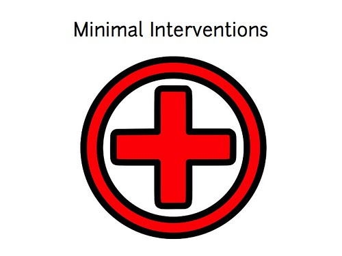 w2sp: Slide 23: Provide minimal interventions (web site first aid)