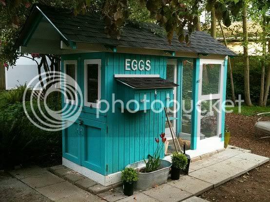 blue chicken coop