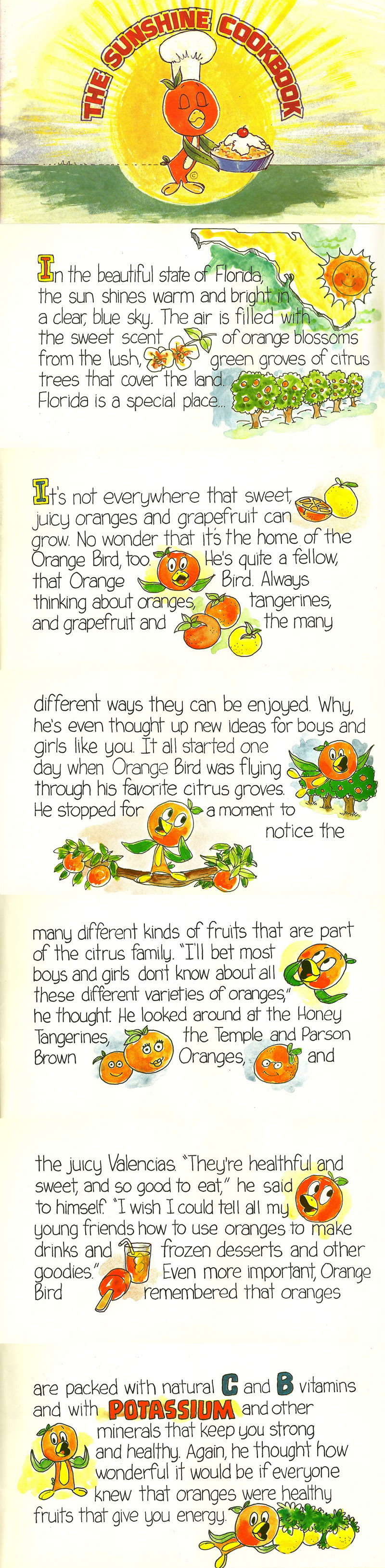 Disney's Orange Bird - The Sunshine Cookbook