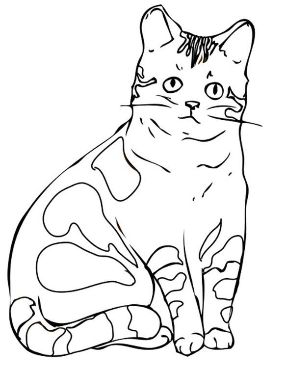 ausmalbilder bagger cat