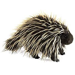 realistic porcupine puppet for teaching science