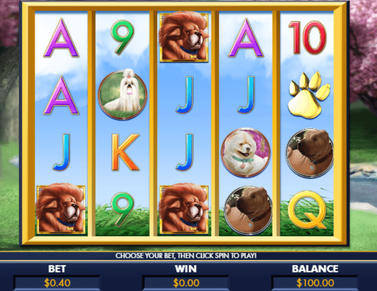 Unleashed club a bark in the park genesis casino slots movie cheats spins