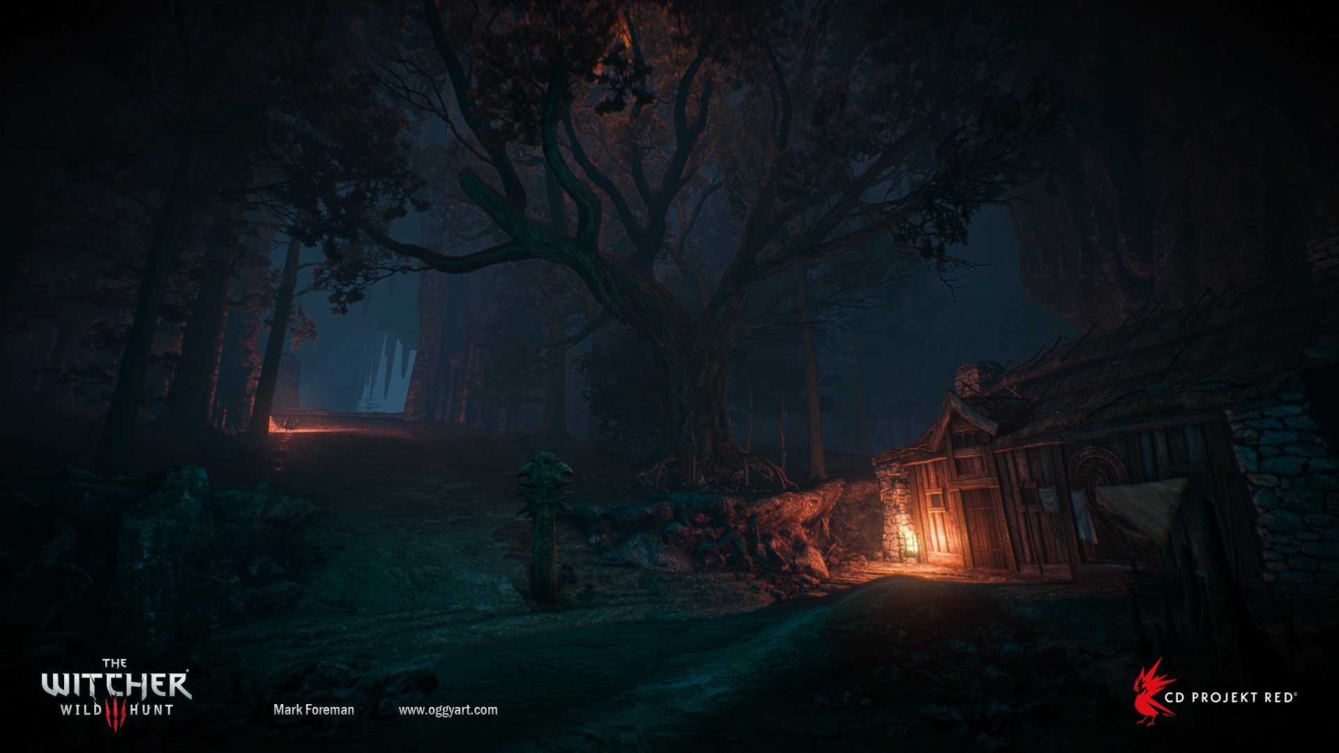 Night Time The Witcher 3 Wild Hunt Wallpaper 49251 Baltana