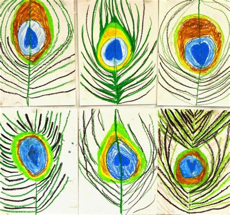 grade peacock feather drawings lessons