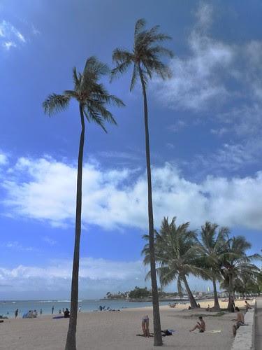 Ala Moana, Oahu