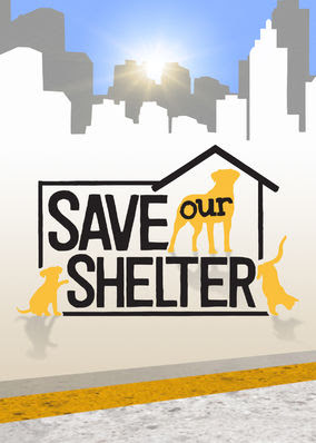 Save Our Shelter - Season 1