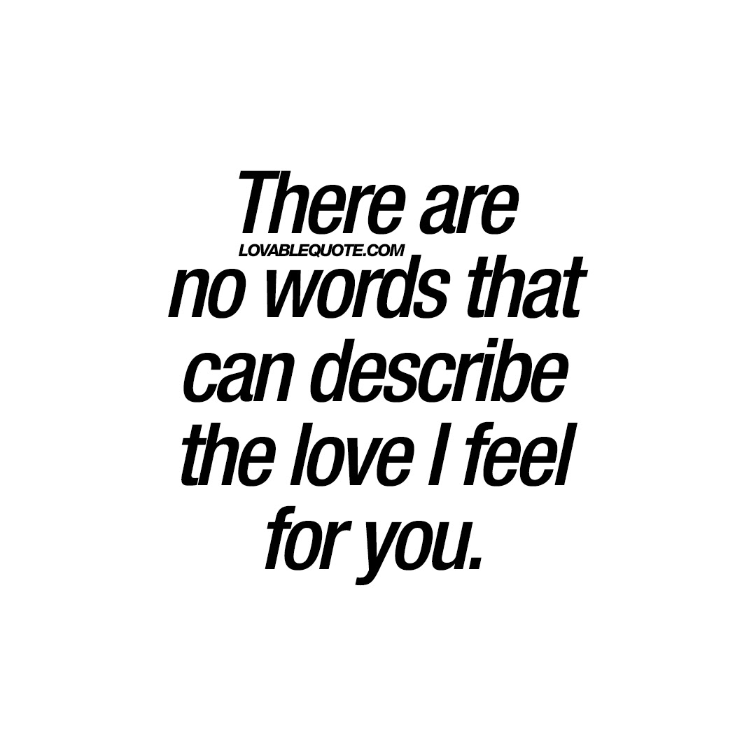 There Are No Words That Can Describe The Love I Feel For You Quotes
