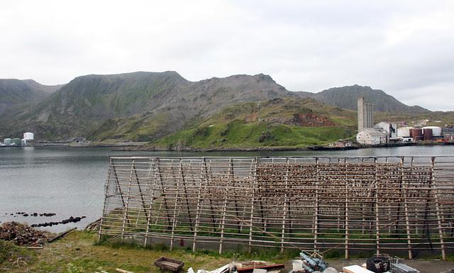 IMG_4932 Nordkapp fish racks
