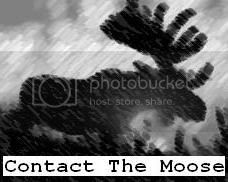 Contact The Moose