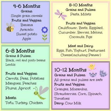 baby food  recipes     month